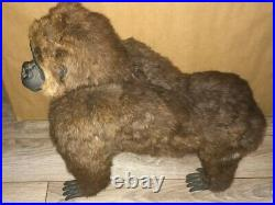 Vintage Taxidermy Gorilla Realistic Figure Real Fur Circus Carnival Prize Toy